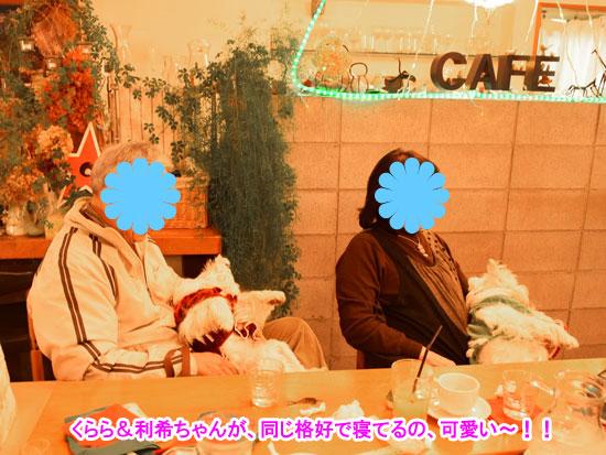 DSC_0112_20141214215622cda.jpg