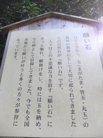 2012_11030469.jpg
