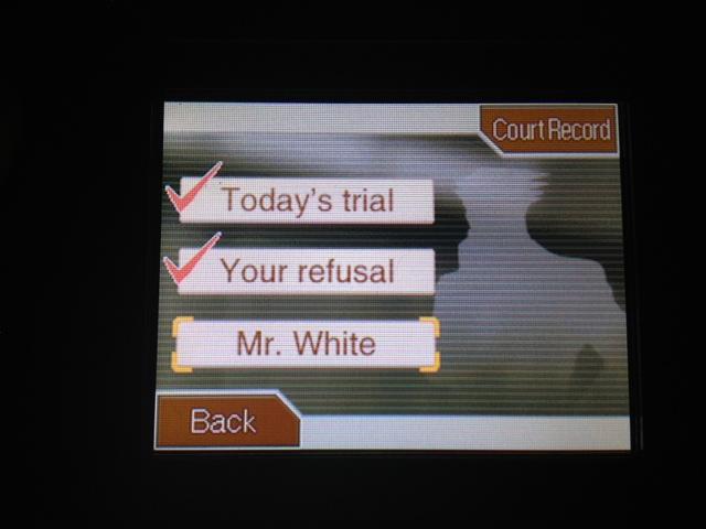 逆転裁判 北米版 グロスバーグ法律事務所2-15