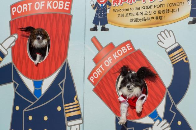 ぷりちゃん歓迎神戸オフ会その1-012