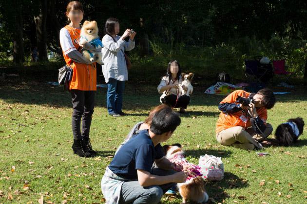 サザオフ2013【熊猫犬日記ファミリー】-005