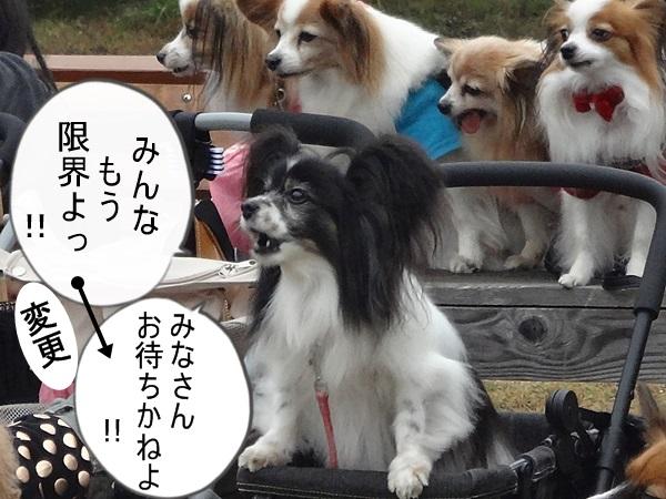 第4回BBQオフ会【皆様のレポートリンク集】-2 -a