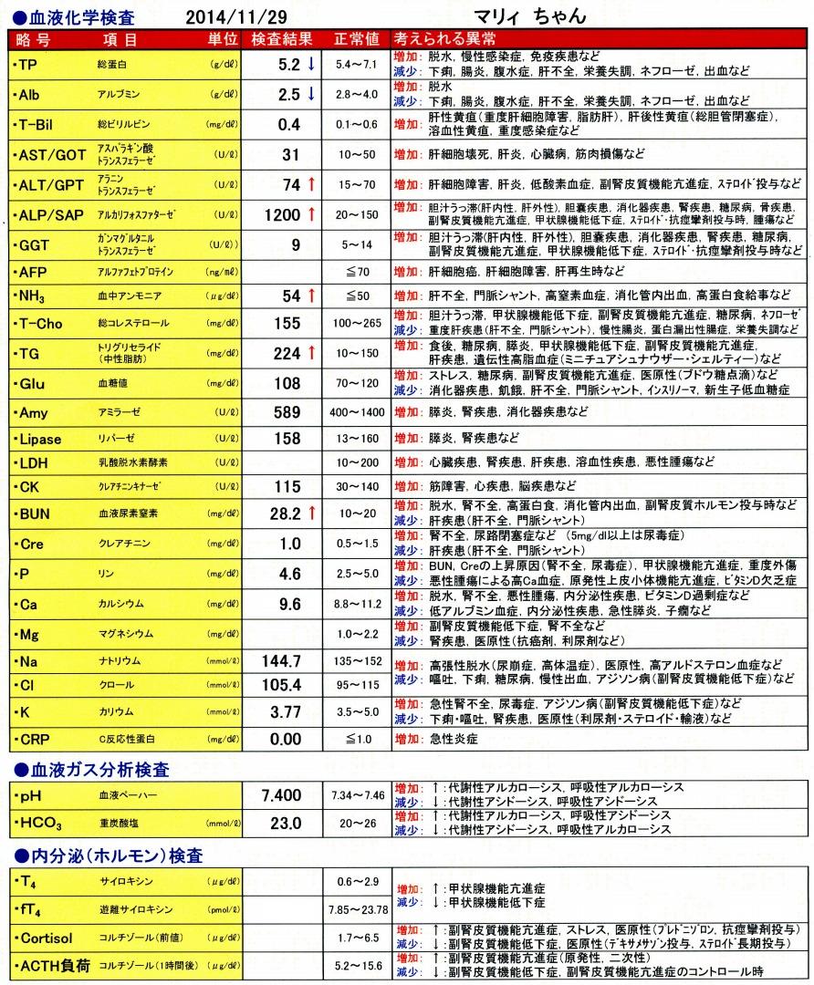 血液検査結果20141129-2