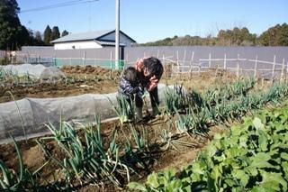 ブログ2 0103野菜 (2)