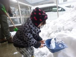 ブログ2 0210雪
