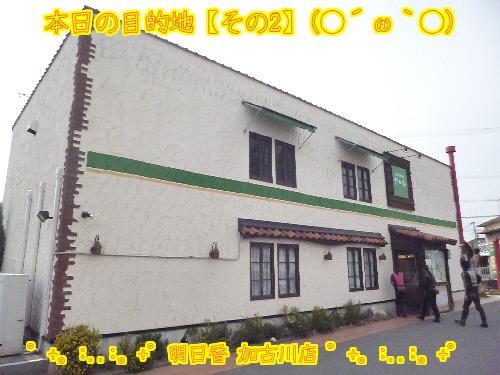 HNgowEX5uVRqGT51364352968_1364353244.jpg