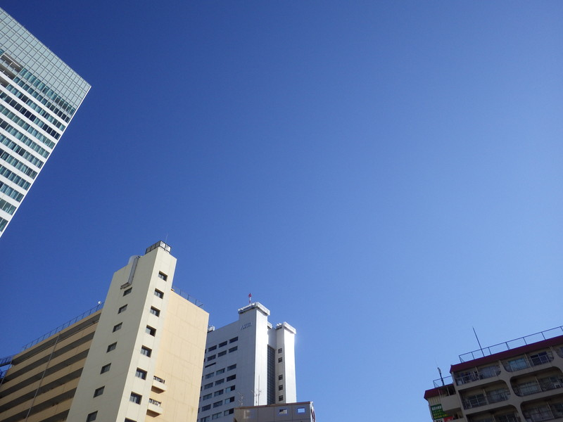 IMGP5906.jpg