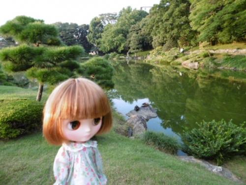 清澄庭園♪
