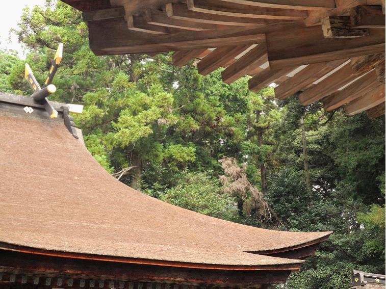 2013御上神社本殿屋根と千木