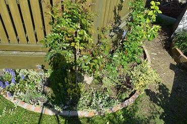 南側庭花壇