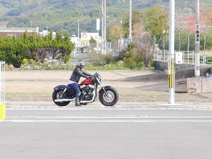 11月16日うどんツー (101)