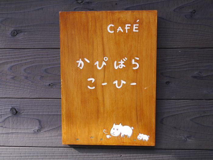 11月24日 蒜山チーズ ツー (14)