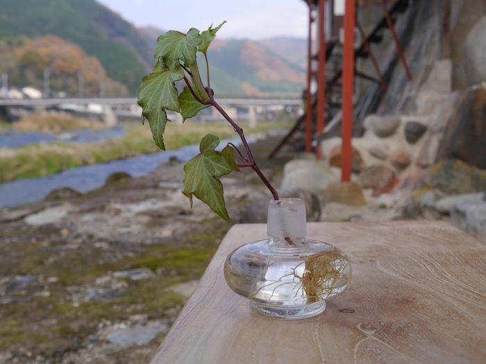 11月24日 蒜山チーズ ツー (30)