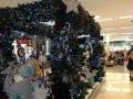 クリスマス ロビタン1 アロマスクール マッサージスクール オーストラリア