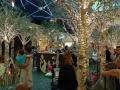 クリスマス ロビタン2 アロマスクール マッサージスクール オーストラリア