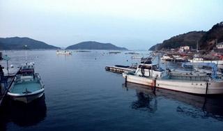 宇和島漁港