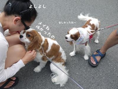 fc2blog_20130731155253ca1.jpg