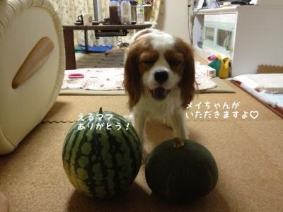 fc2blog_20130813223335cee.jpg