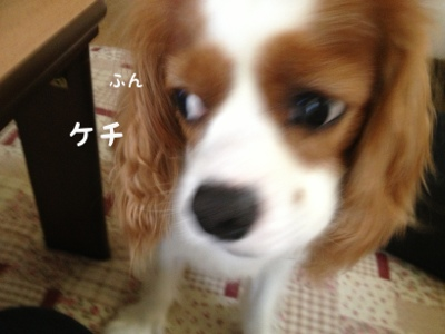 fc2blog_20130905111802462.jpg