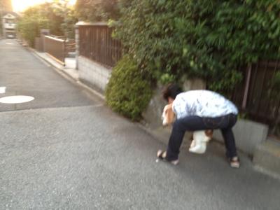 fc2blog_20130919224119d0e.jpg
