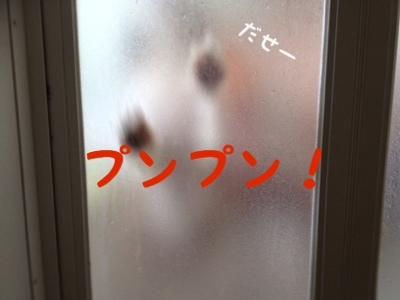 fc2blog_20130924174457736.jpg