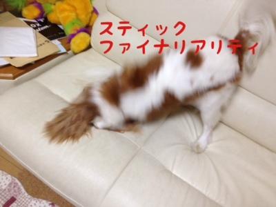 fc2blog_20130924181742dd6.jpg