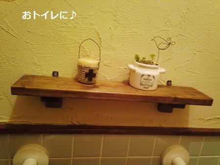 シェルフ~nori2さん・多肉~sakura196さん・網籠~kururuさん♪