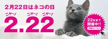 0222猫の日セール