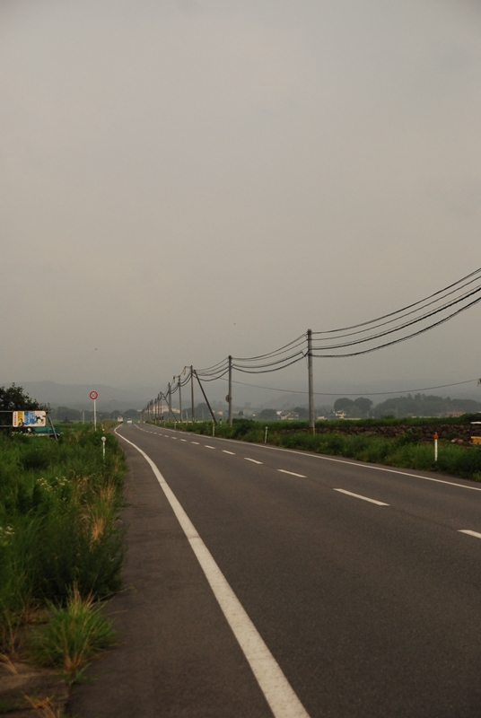7月27日28日鳥取と岩国の蓮畑 009
