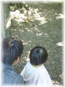 $日々のこと-Image006.jpg