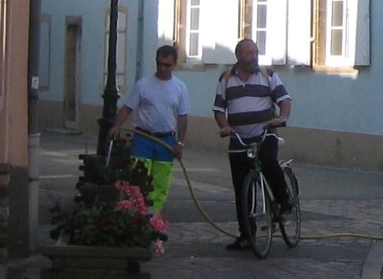 花壇に水をやる市の職員
