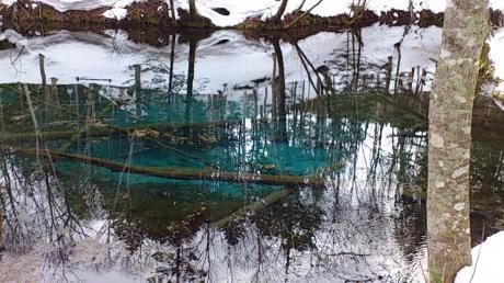 神の子池+青い2_convert_20140212202136