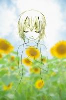 元_sunflower_top