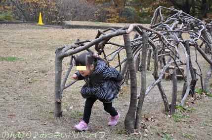 shinrinkoen20141116.jpg