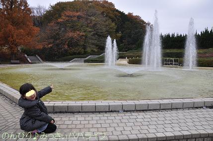 shinrinkoen20141118.jpg