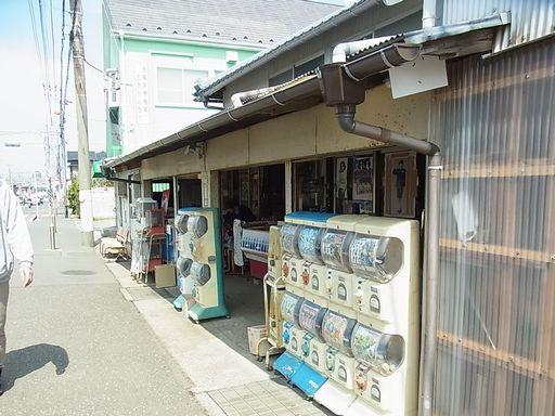 20130328 三崎 (1)