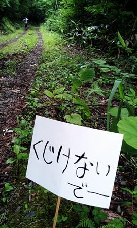 15C360_2013-07-20-15-07-23-803.jpg