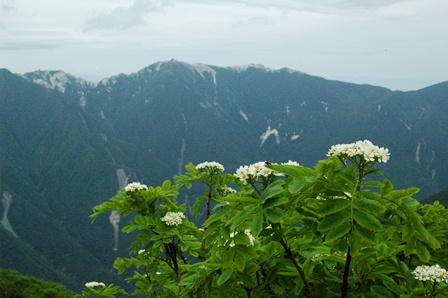01鳳凰三山