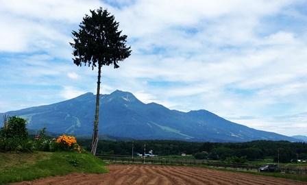 妙高山1.jpg