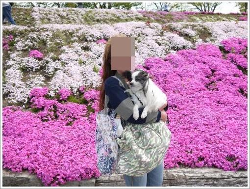 038_convert_20130416131949.jpg