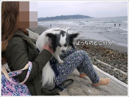 109_convert_20130402095040.jpg