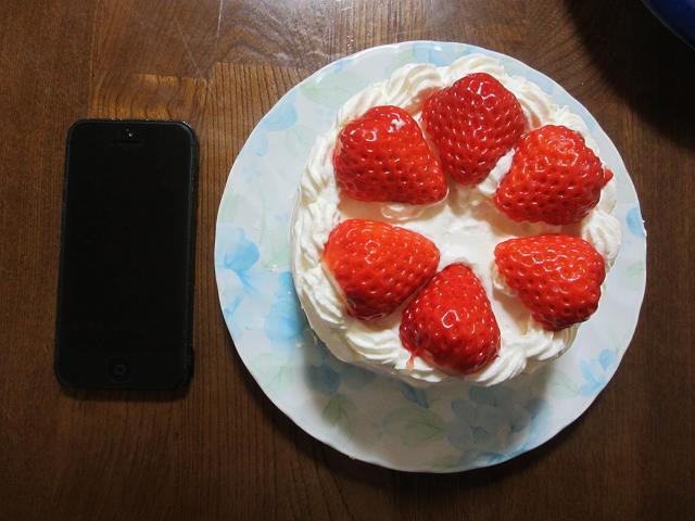 ケーキのサイズ