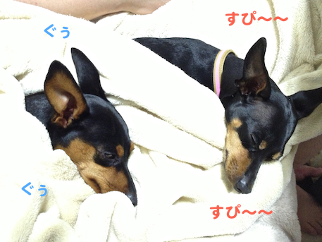 20130428-2.png