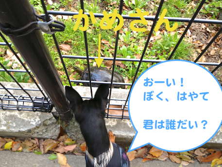 20130428-3.png