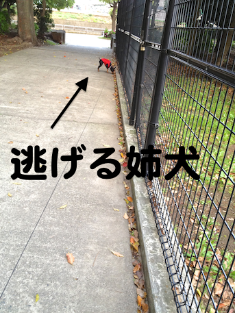 20130428-4.png