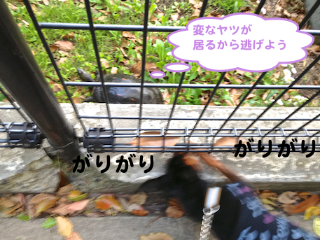 20130428-5.png