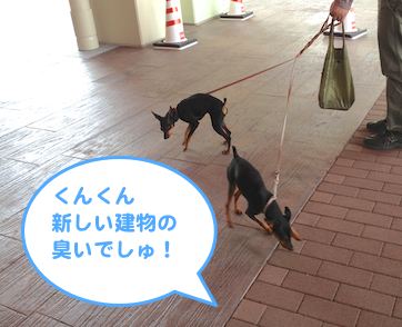 20130430-7.png