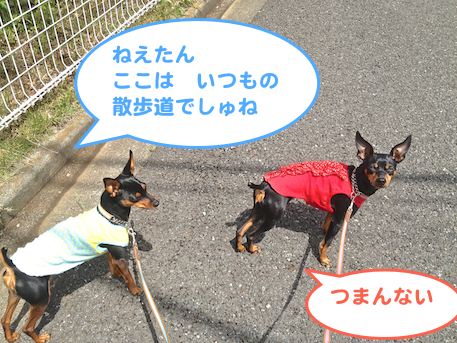 20130503-7.png