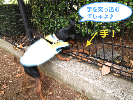 20130503.png