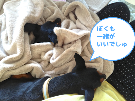 20130509-2.png